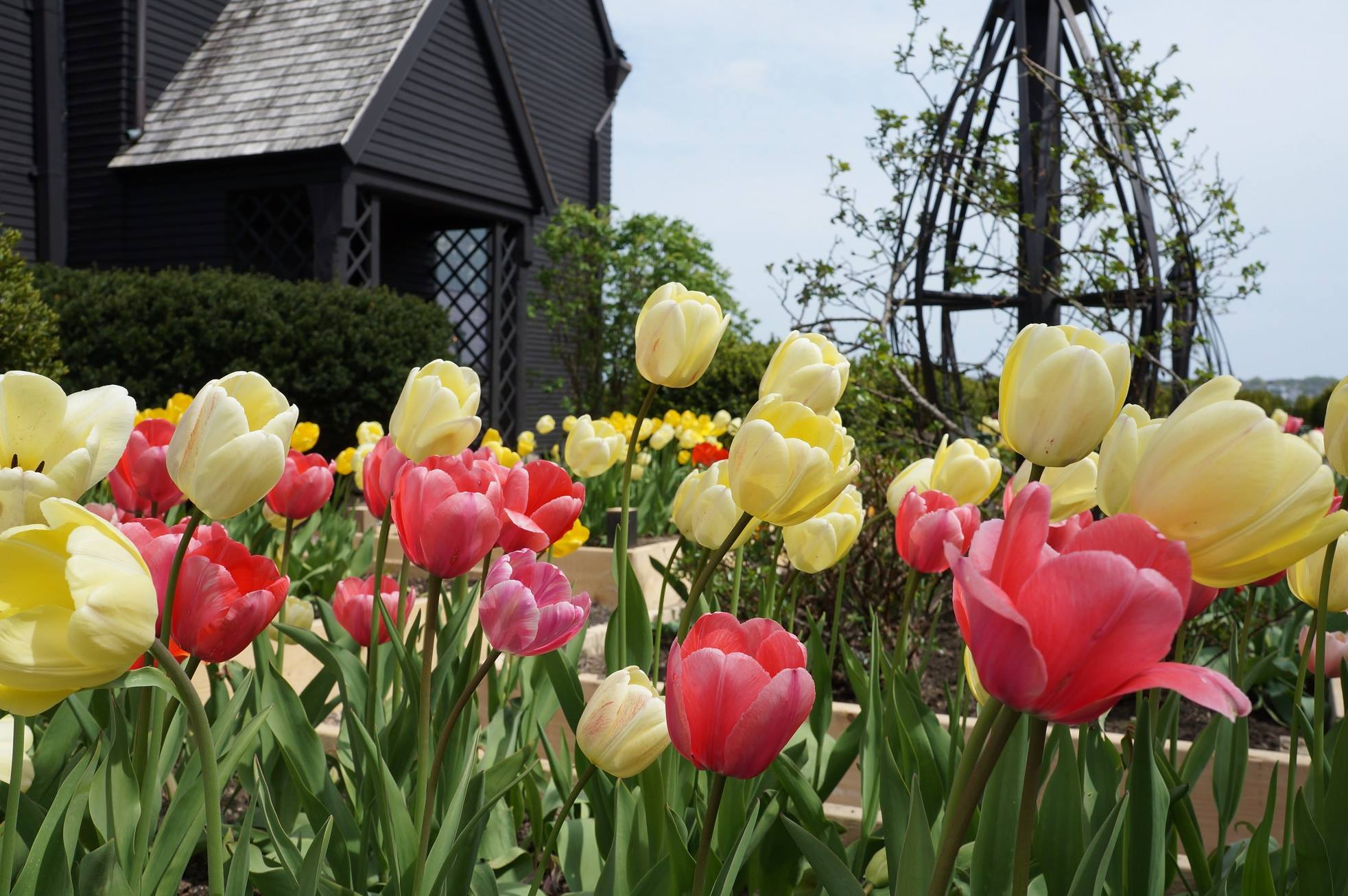 Spring Food Tours in Salem, MA